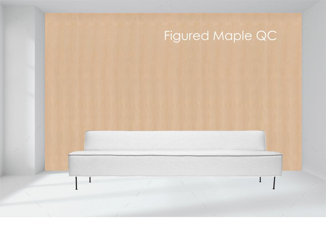 fig maple.jpg