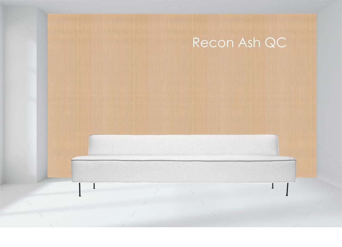 recon ash.jpg