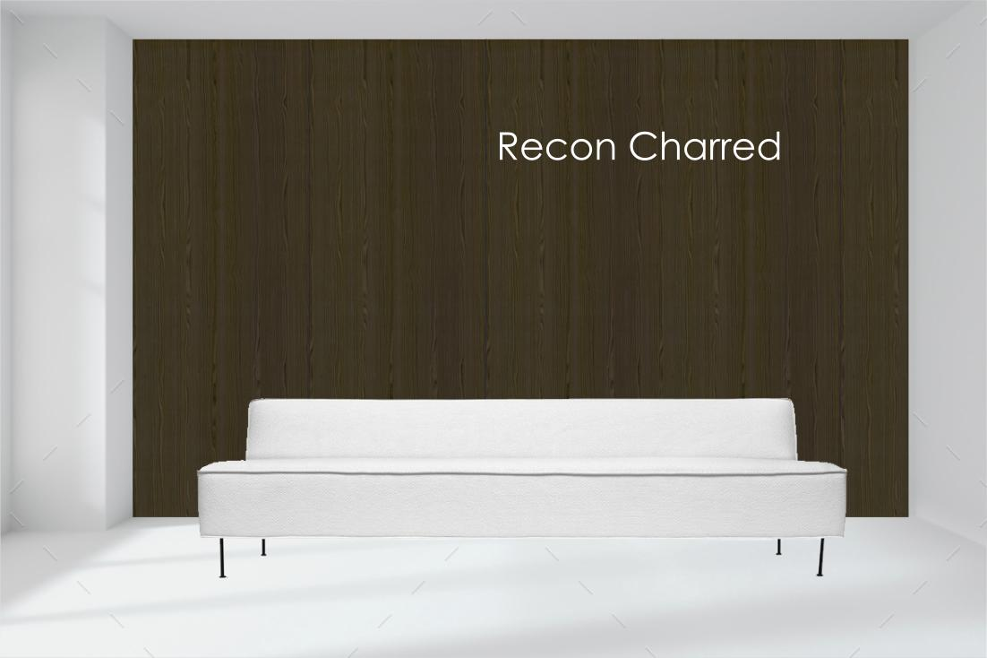 recon charred.jpg