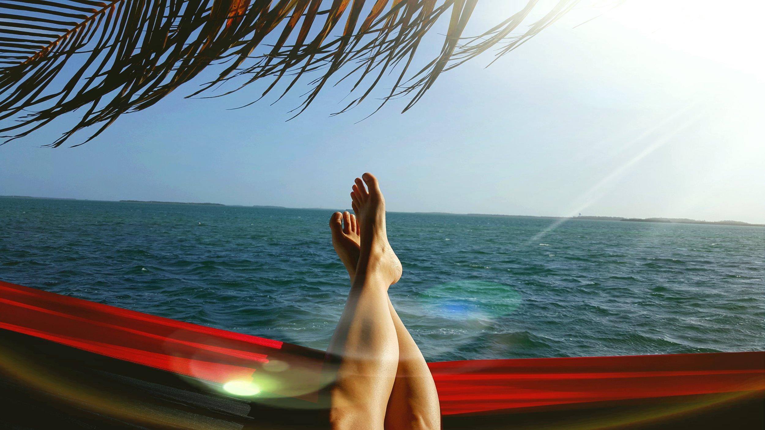 Key West Hammock Skyline Photo