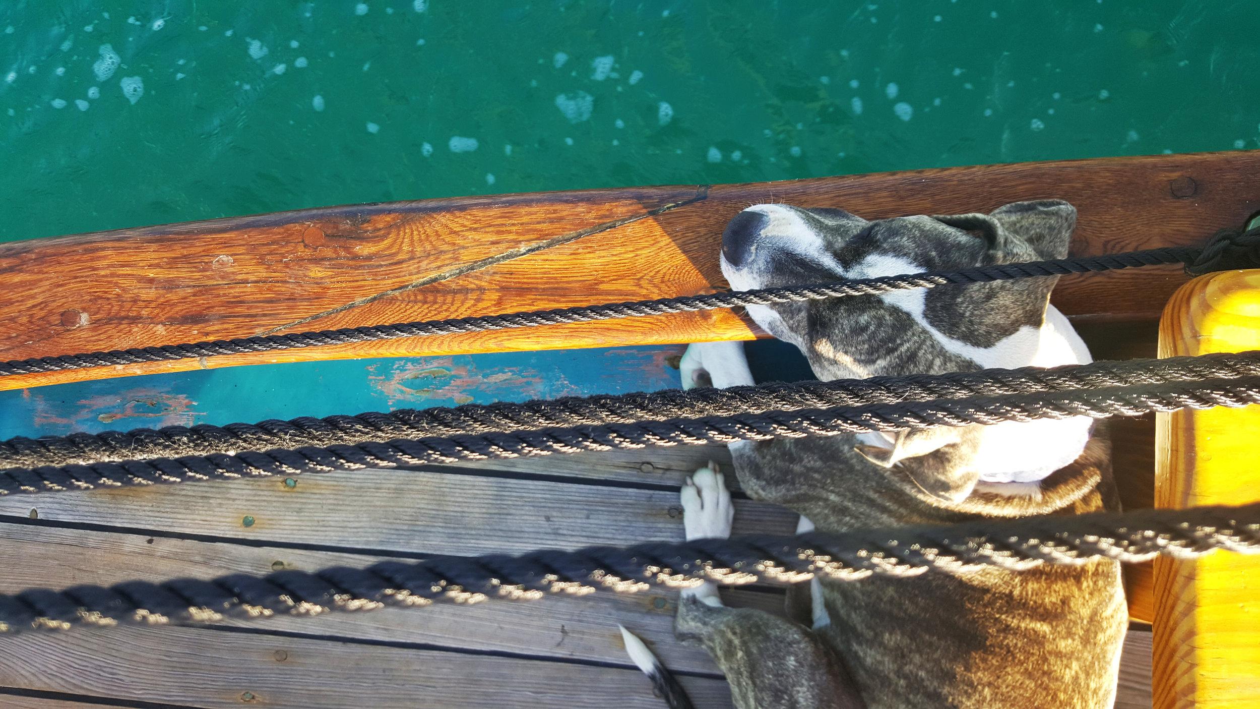 Schooner Hindu Finnegan Key West photo
