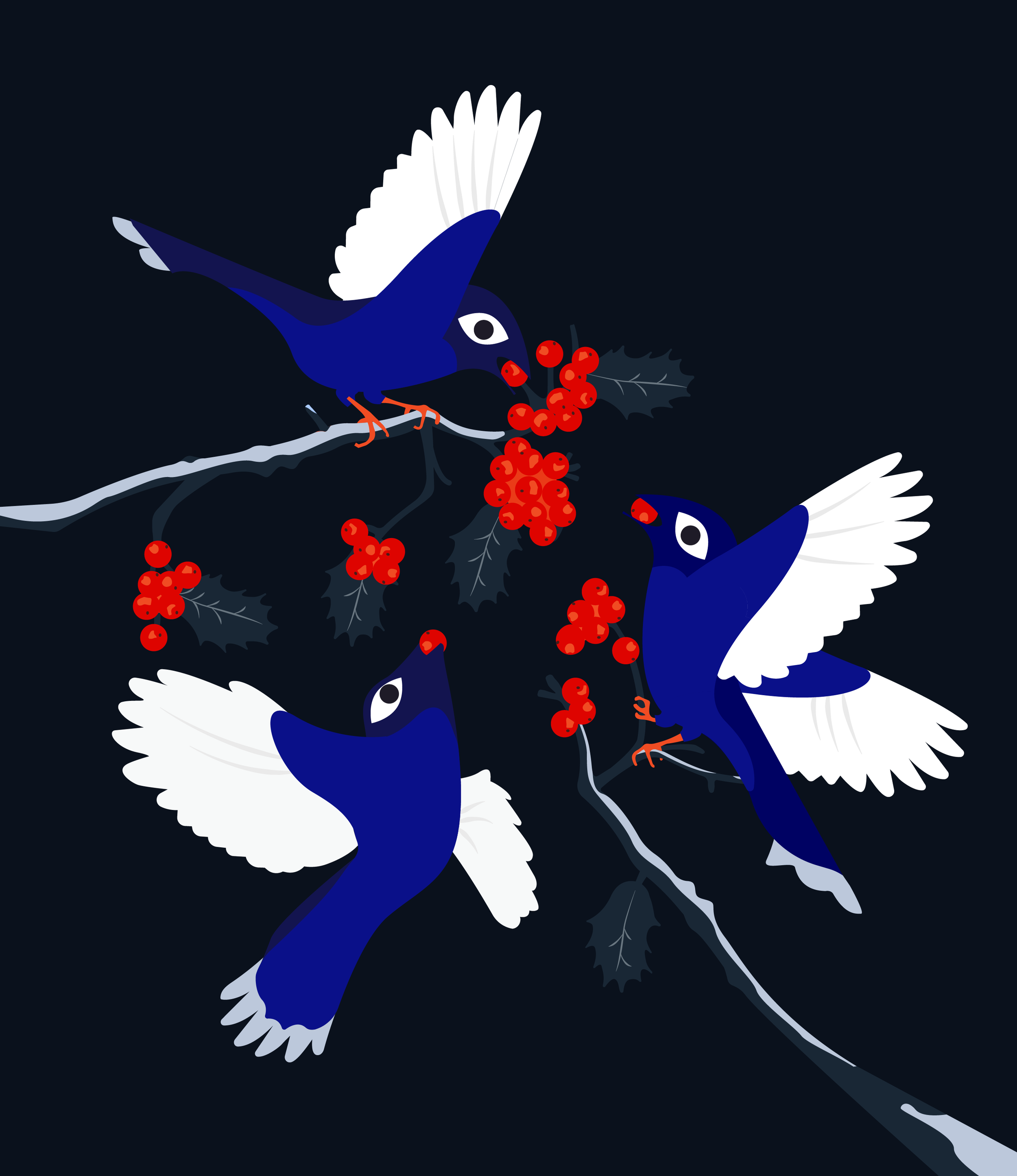 final_birdy-05-05.png