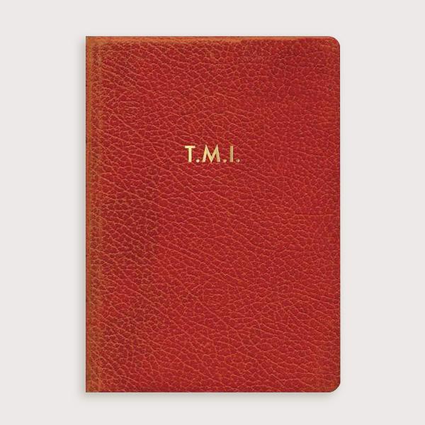 Mincing Mockingbird Journal 8.jpg