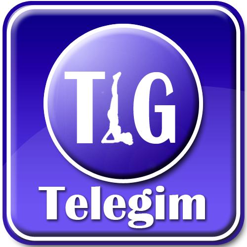 Telegim.png
