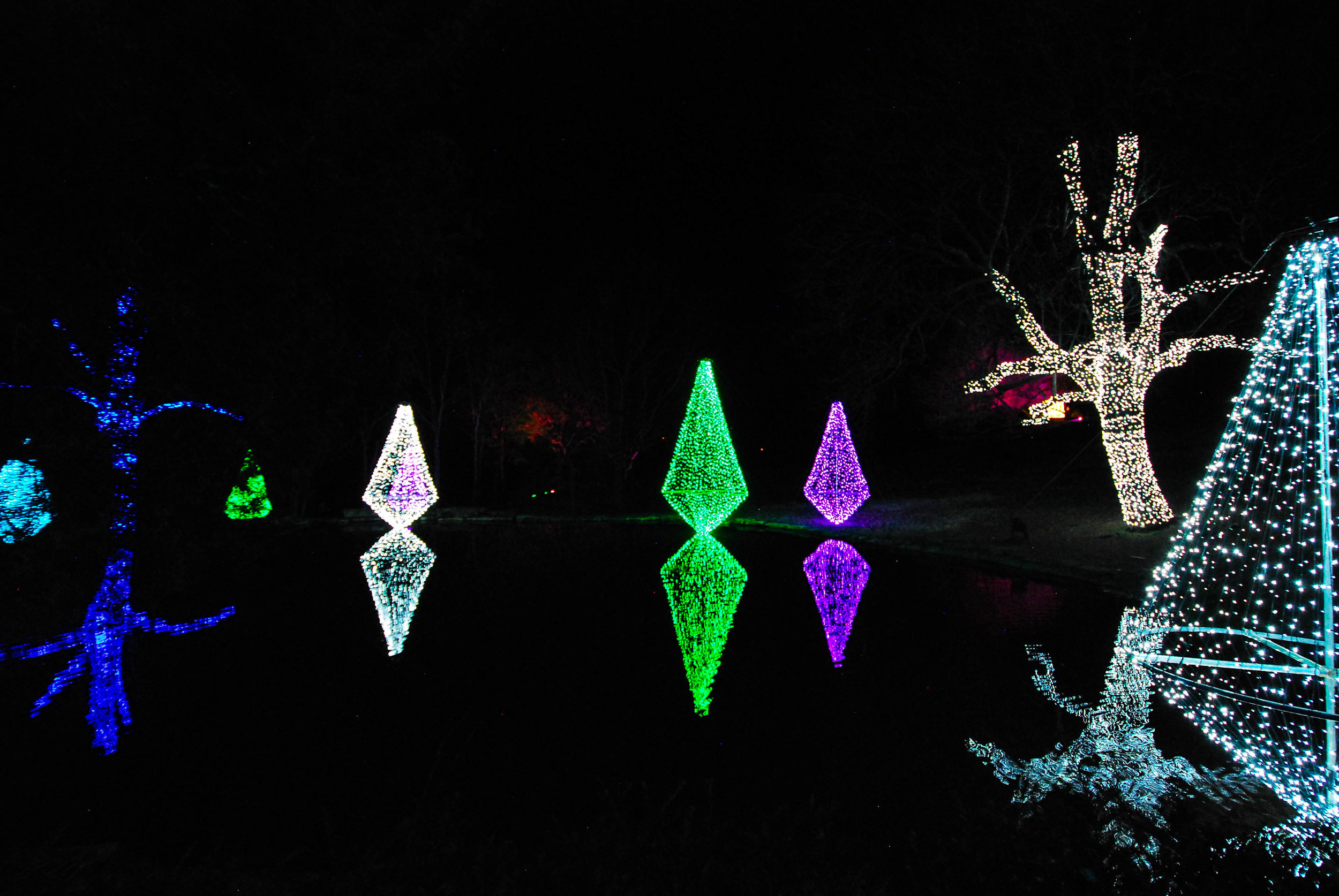 CheekwoodLights17-3.jpg