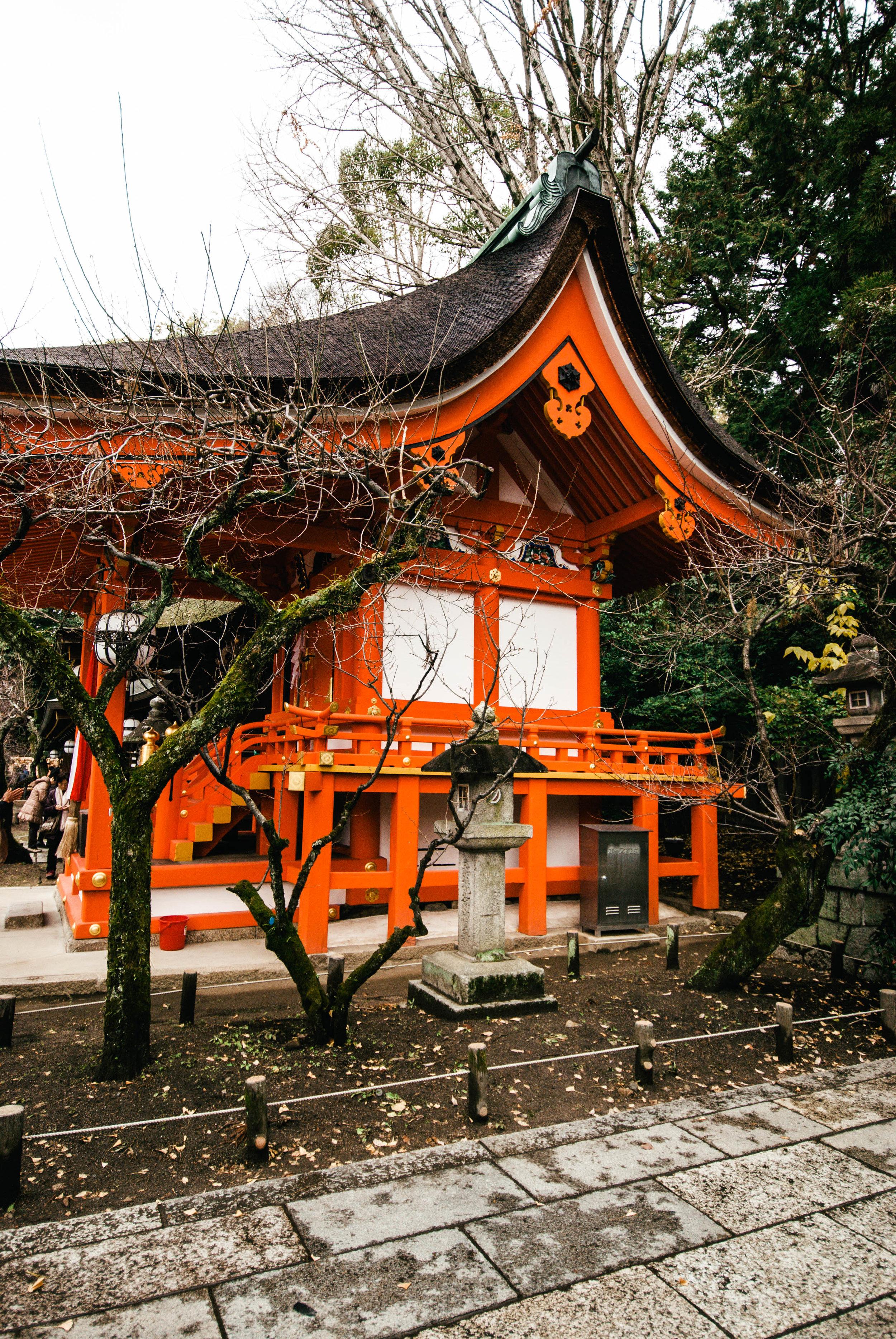 Japan17-312.jpg