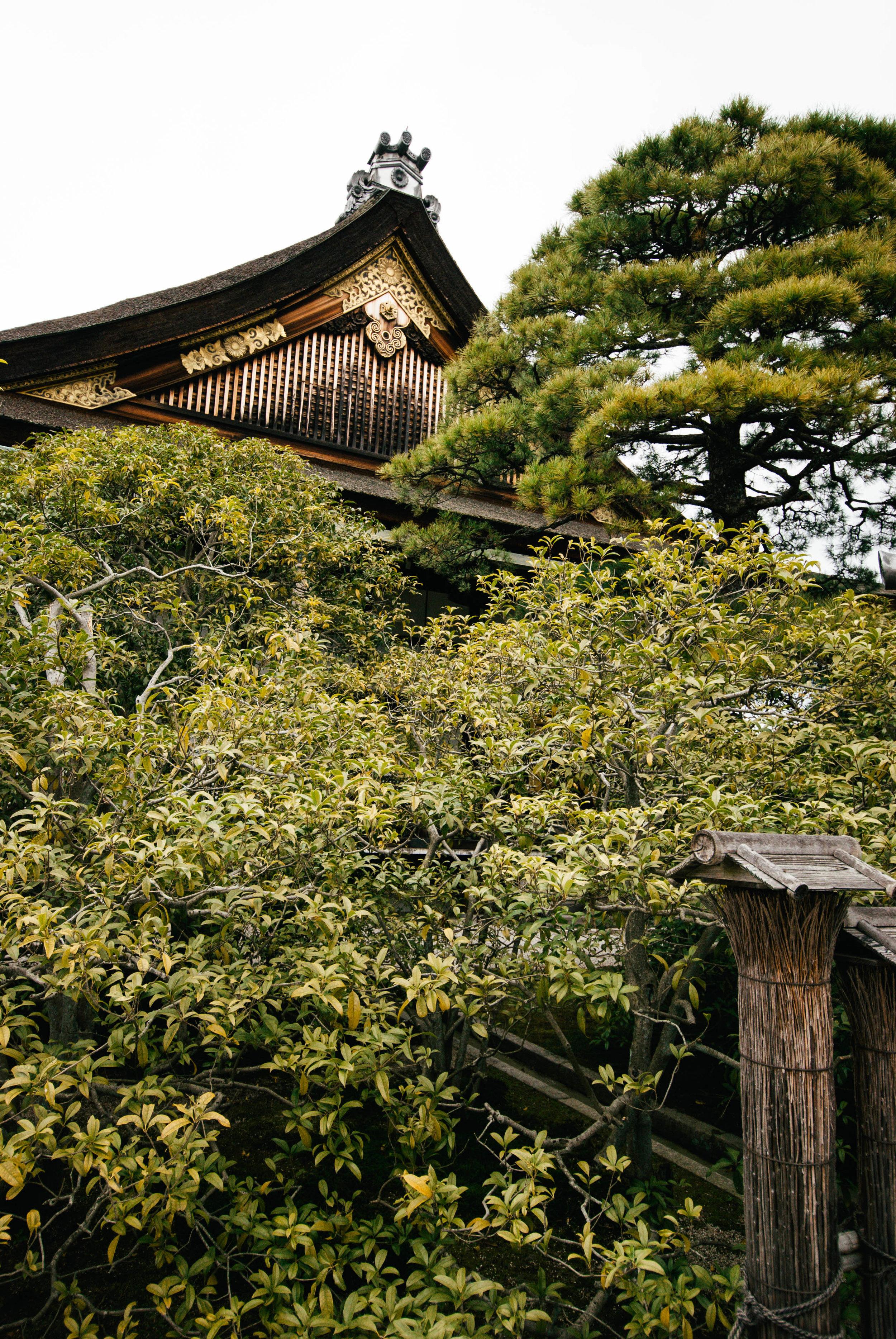 Japan17-38.jpg