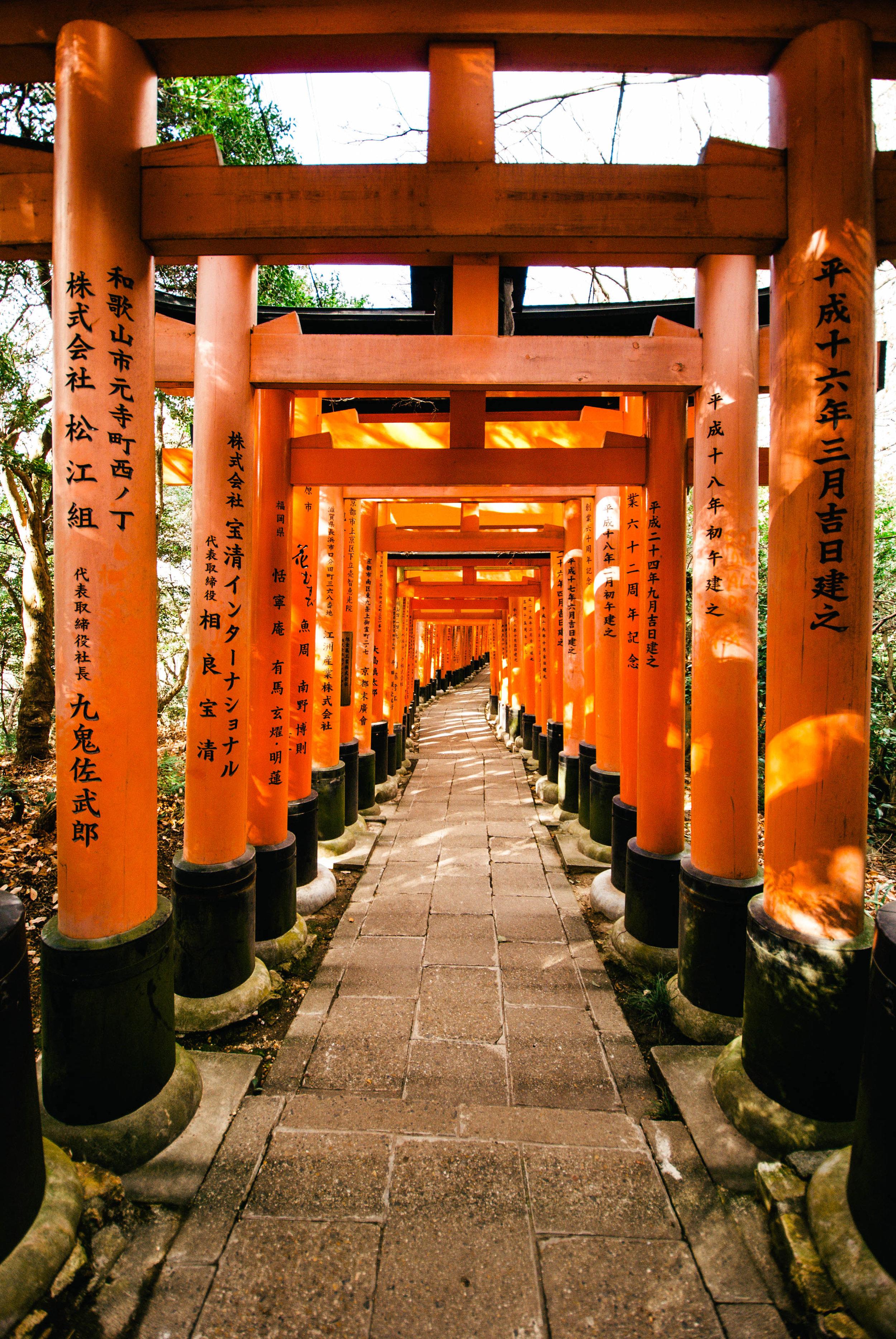 Japan17-94.jpg