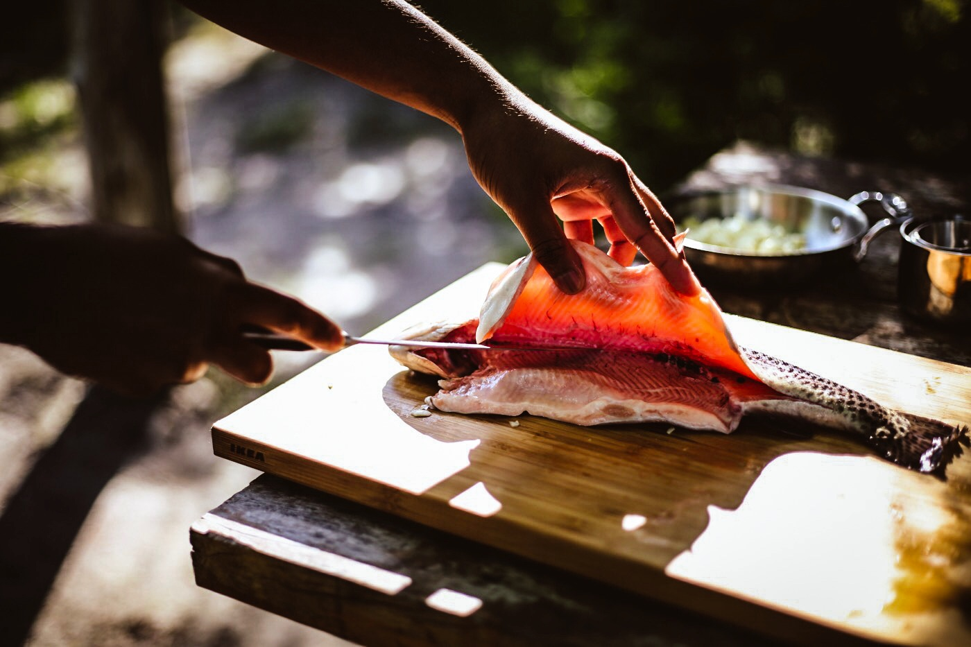 Cutting open the Trout to stuff with Lemon, Sage and Butter (Photo captured by  @ajfernando )