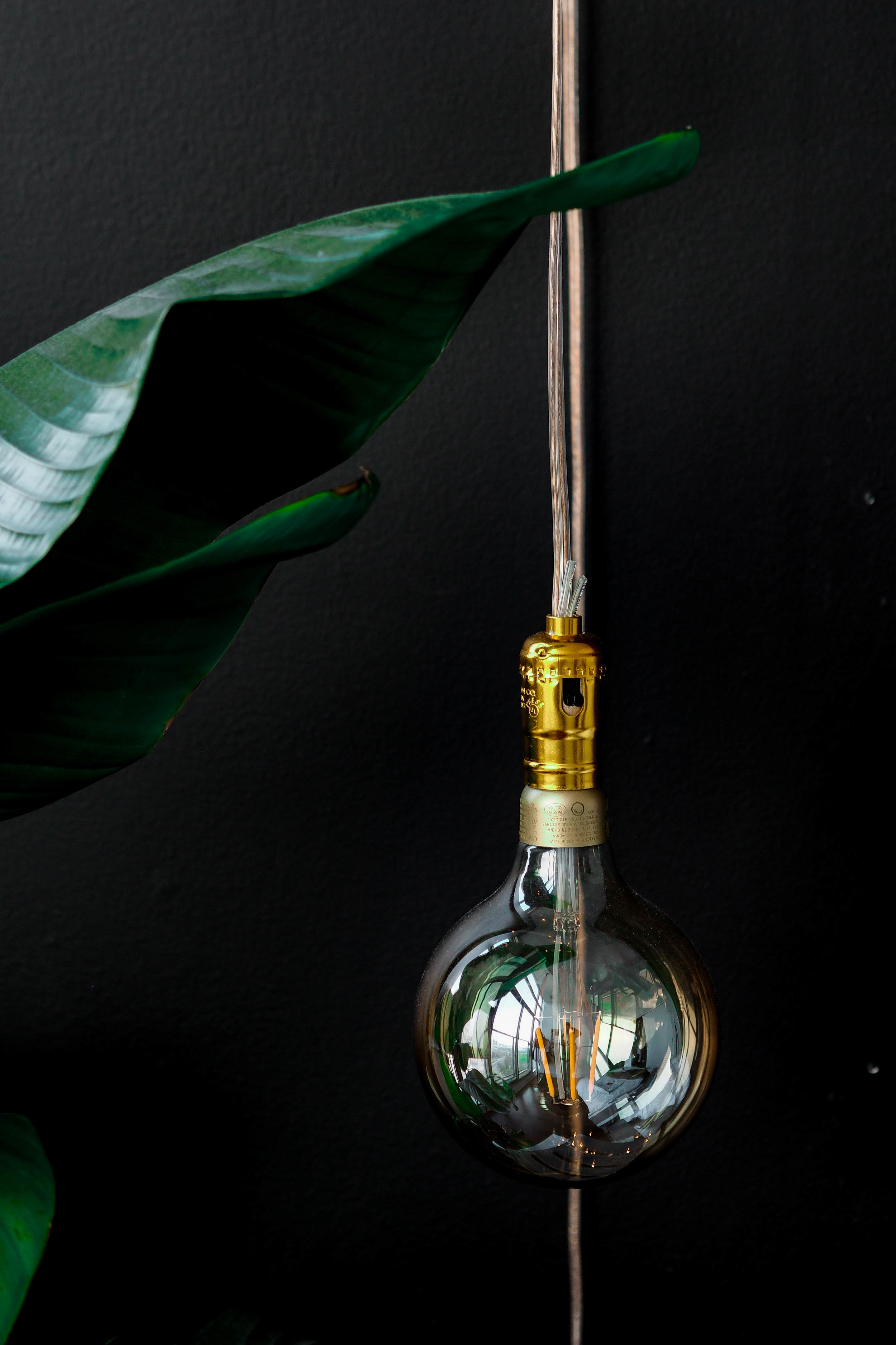 Hanging Edison Bulb -