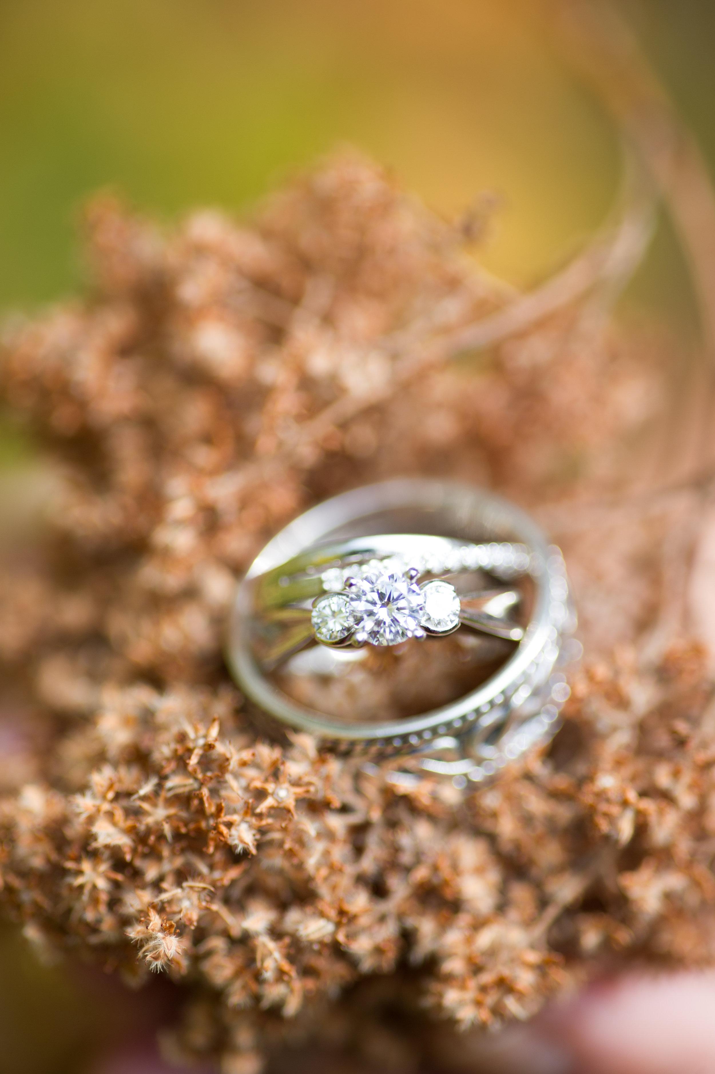 Wedding Favorites Edit-45.jpg