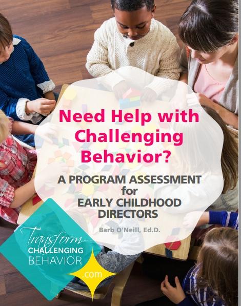 challenging-behavoior-directors-assessment.jpg