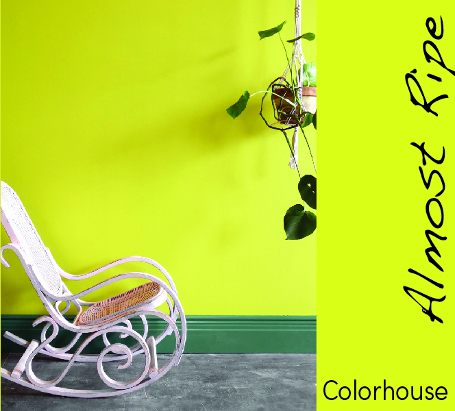 colorhouse-07.jpg