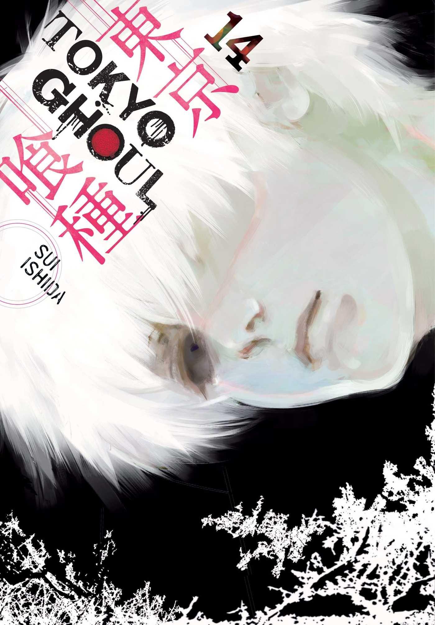 Tokyo Ghoul vol. 14.jpg
