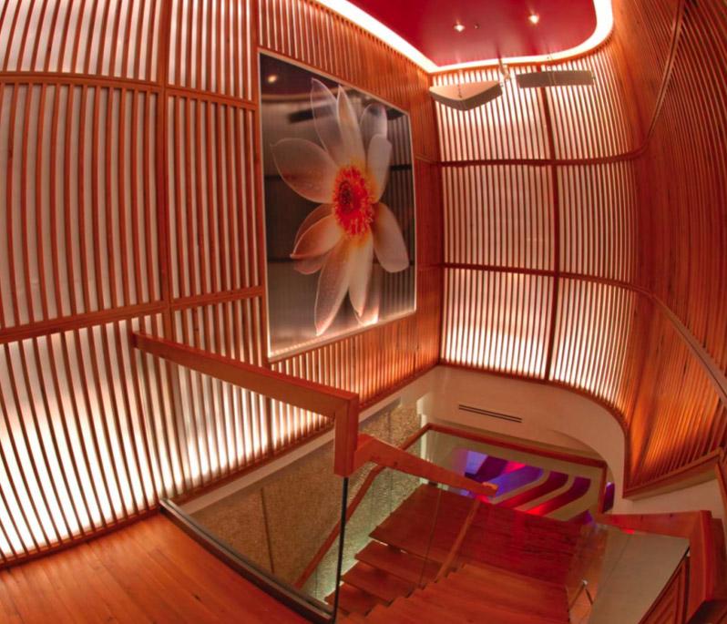 studio-saint-bars-and-restaurants-lotus-lounge-washington-dc-1