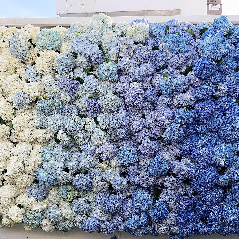 Ombre Floral Back Drop -