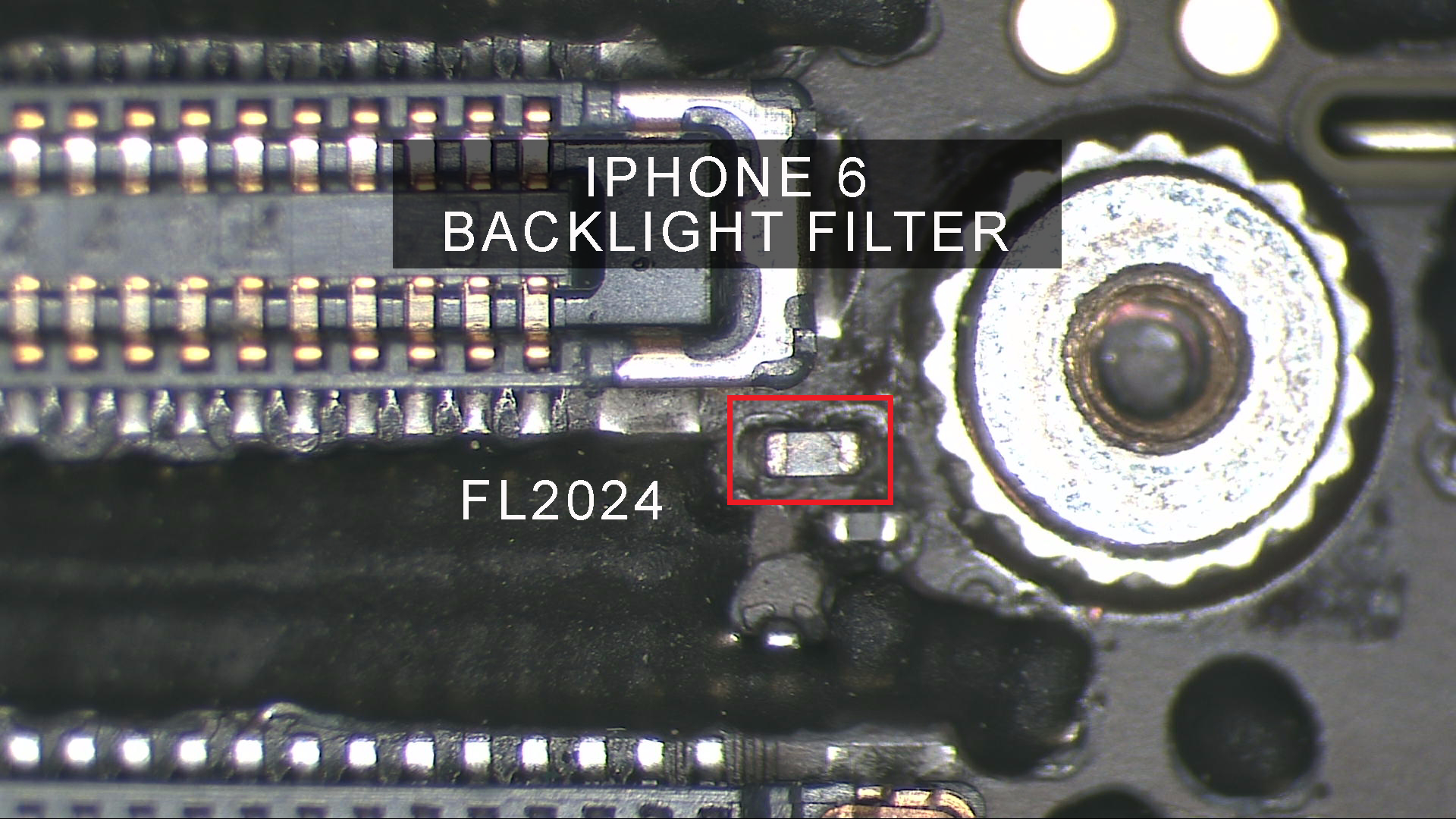 iphone backlight filter repair