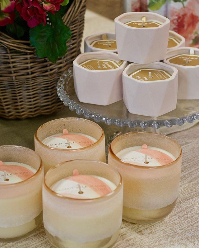"""Brand new containers for some of our favorite everyday candles are in the shop! """"Coconut Milk Mango"""", """"Fresh Sea Salt"""", & """"Gardenia"""" are all back. Come smell for yourself! 😍☀️"""