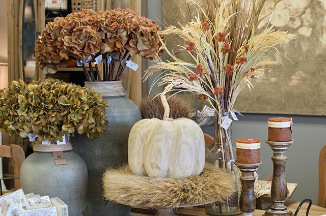 Fall at the shop has us all 😍😍😍 Our annual Fall Open House is THIS weekend, Sept. 6 & 7! Join us for some fall fun as we kick off [our favorite] season. Come enter your name in our drawing for a $100 Boxwood gift certificate, enjoy light fall themed refreshments and shop our fall displays with your girlfriends. It's going to be a blast...we can't wait to see you all there! 🍂🌾🍁 • • • • • • #BoxwoodHomeandGift #myboxwoodhome #fall #falldecor #BoxwoodFallOpenHouse #autumn #homedecor #homedecorboutique #houstonboutique #houston #kingwood #atascocita #humbletx #homeandgiftshop