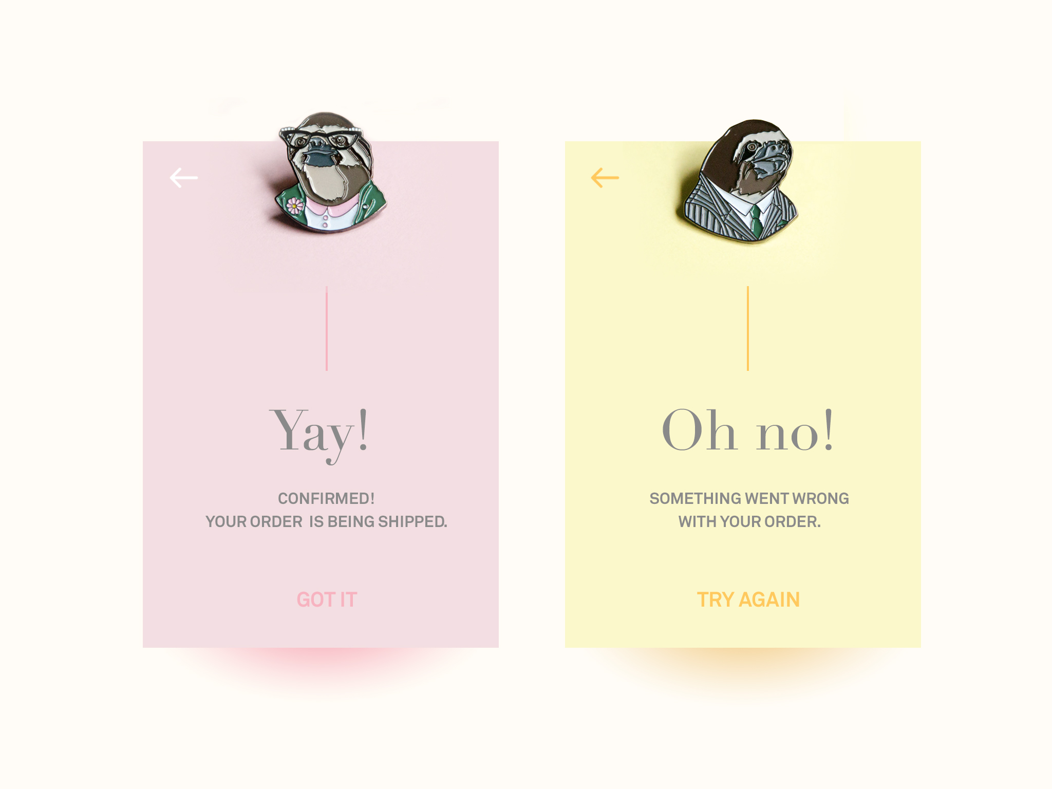 "Boutique Flash Message for ""Success/Error"" Outcomes"