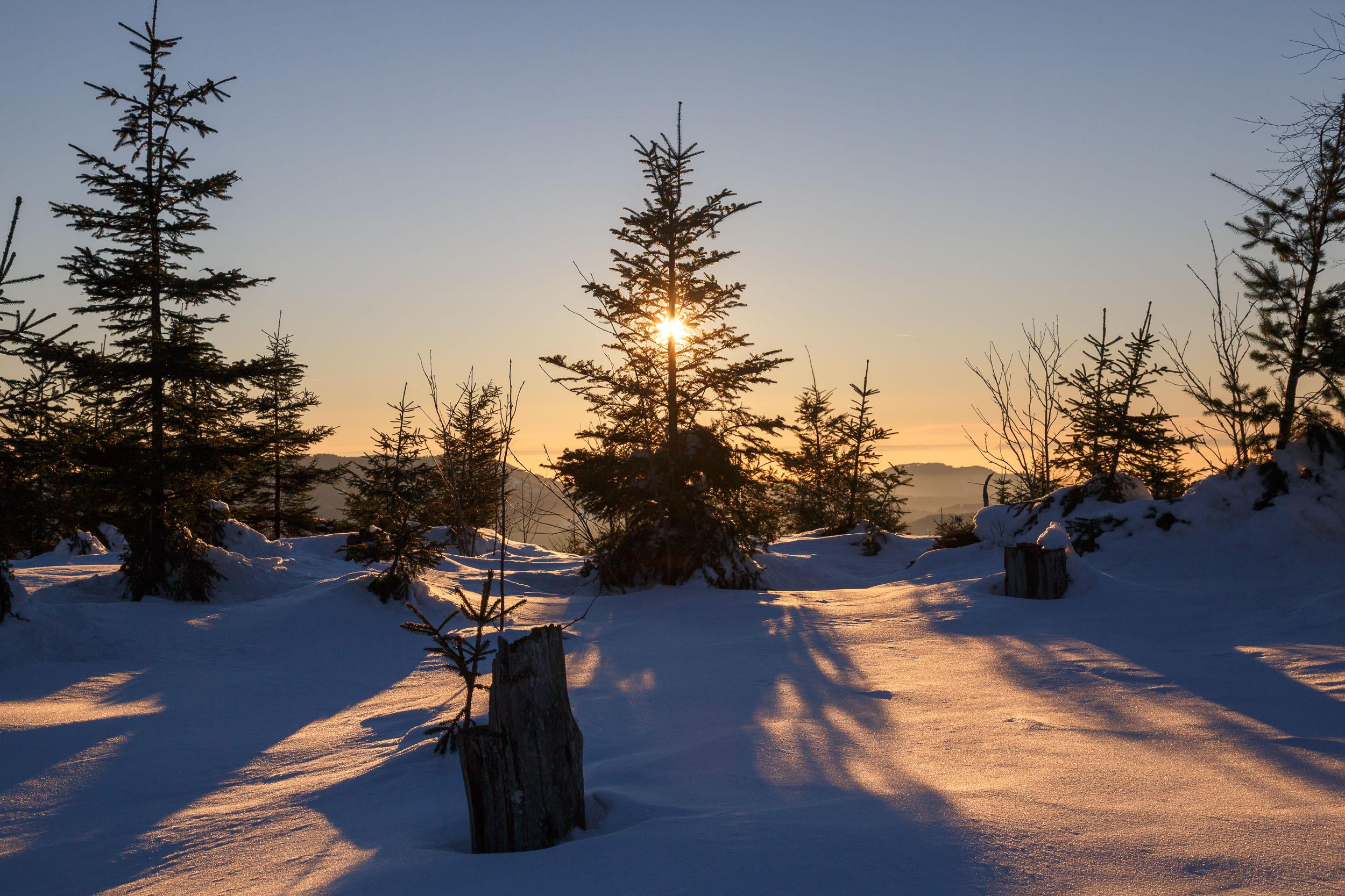 150212_winter_galerie_03.jpg