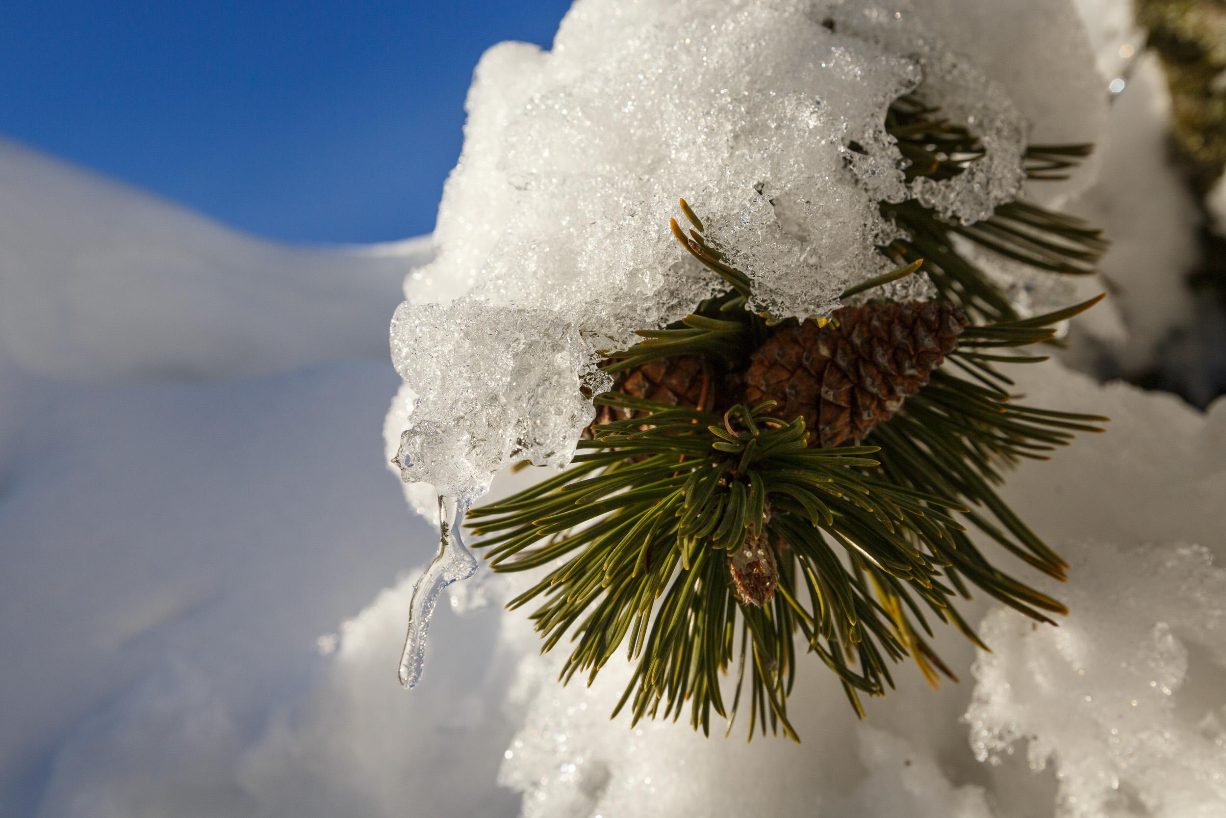 150213_winter_galerie_08.jpg
