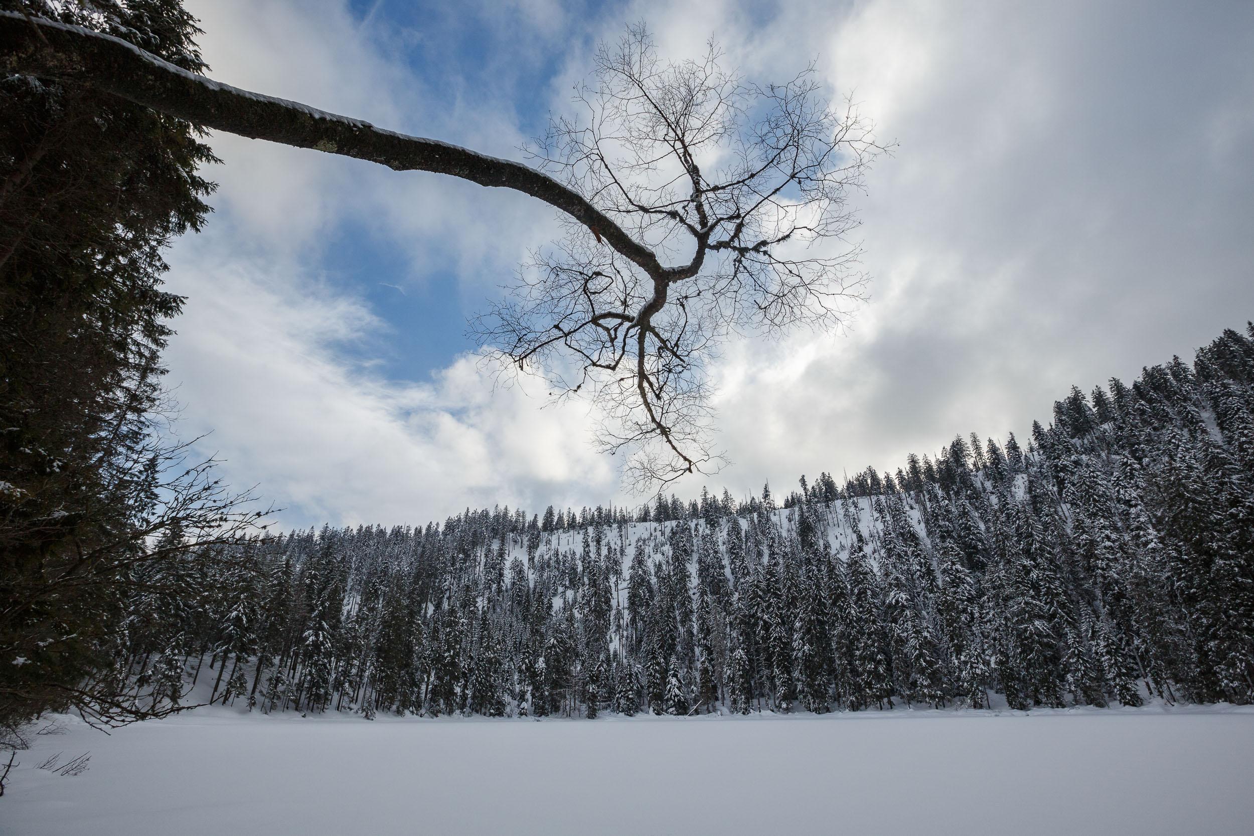 150228_winter_galerie_31.jpg