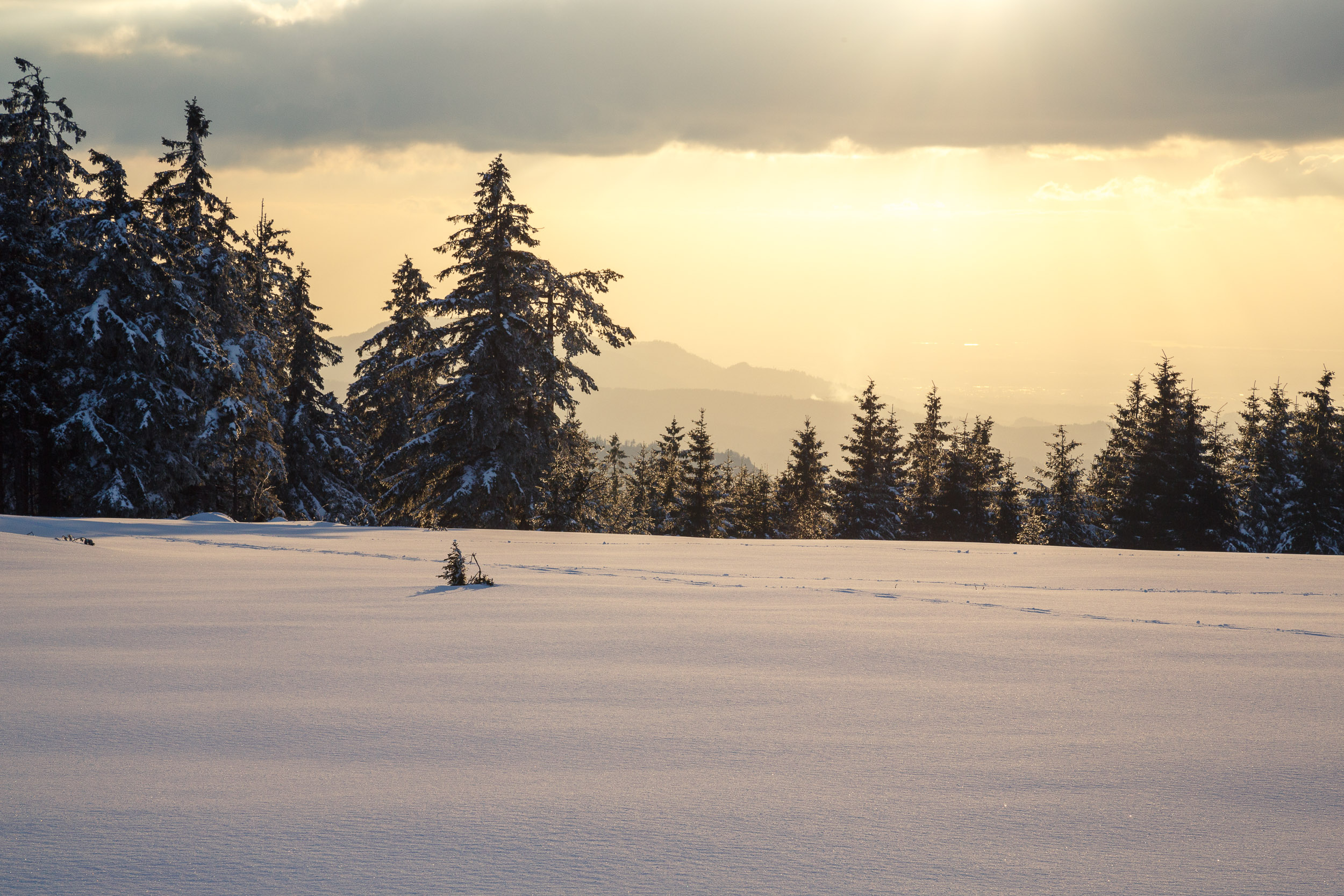150228_winter_galerie_35.jpg