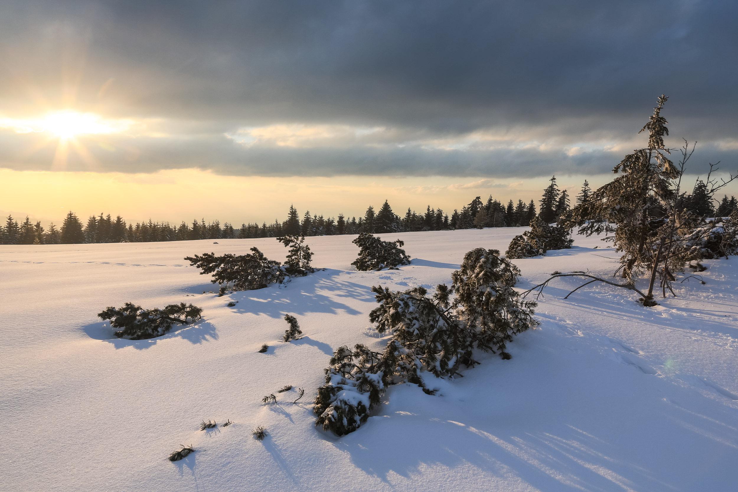 150228_winter_galerie_36.jpg