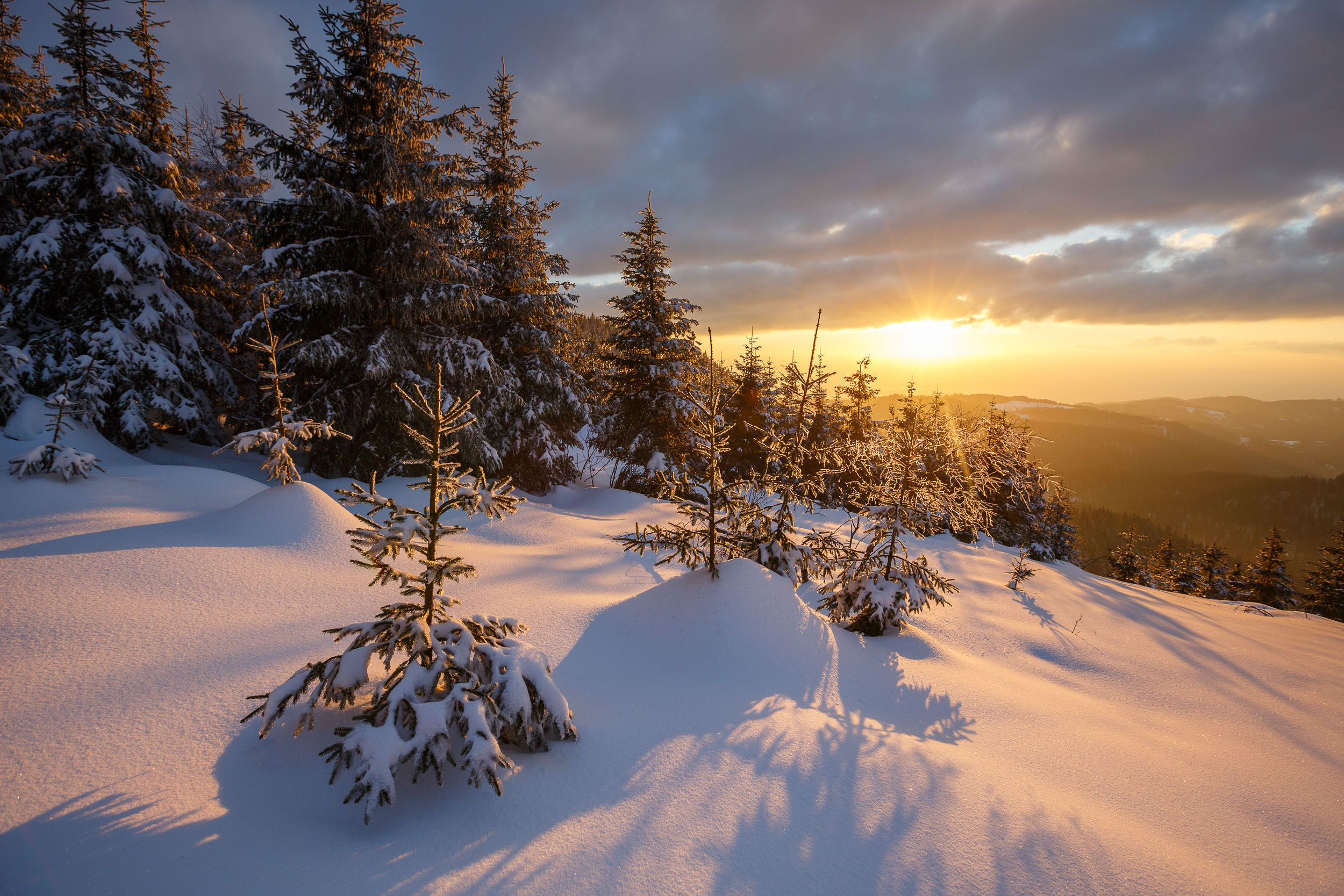 150228_winter_galerie_38.jpg