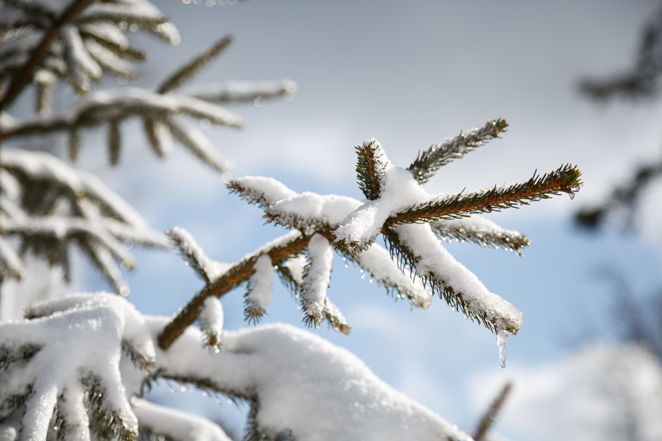 150228_winter_galerie_15.jpg
