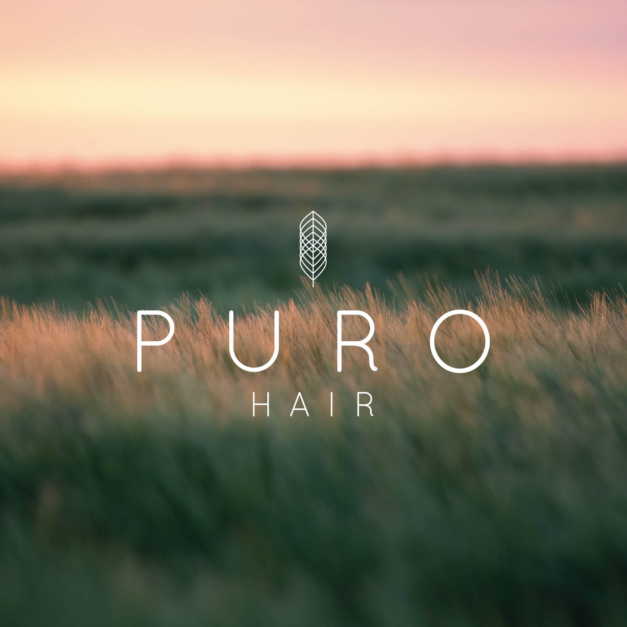 Puro Photo-01 copy.jpg