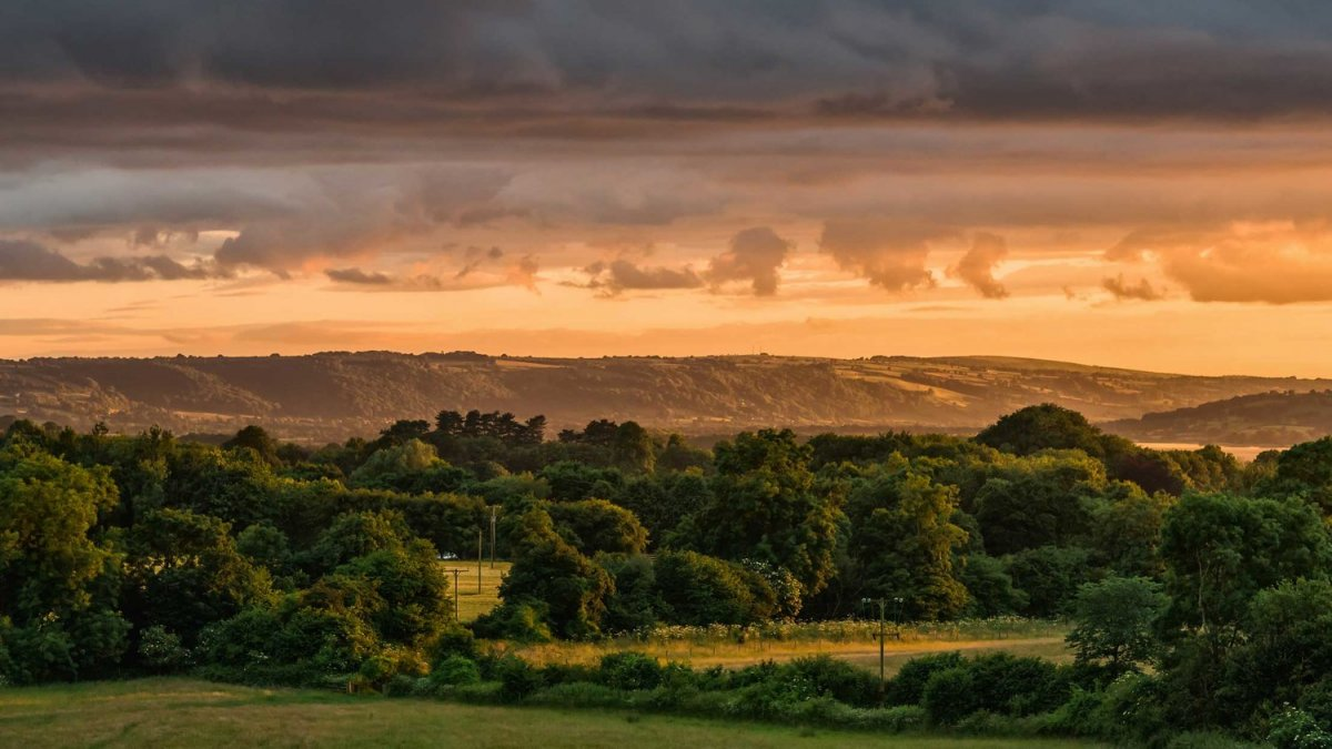 Located between Bath and Bristol - In a stunning 250 acre nature reserve