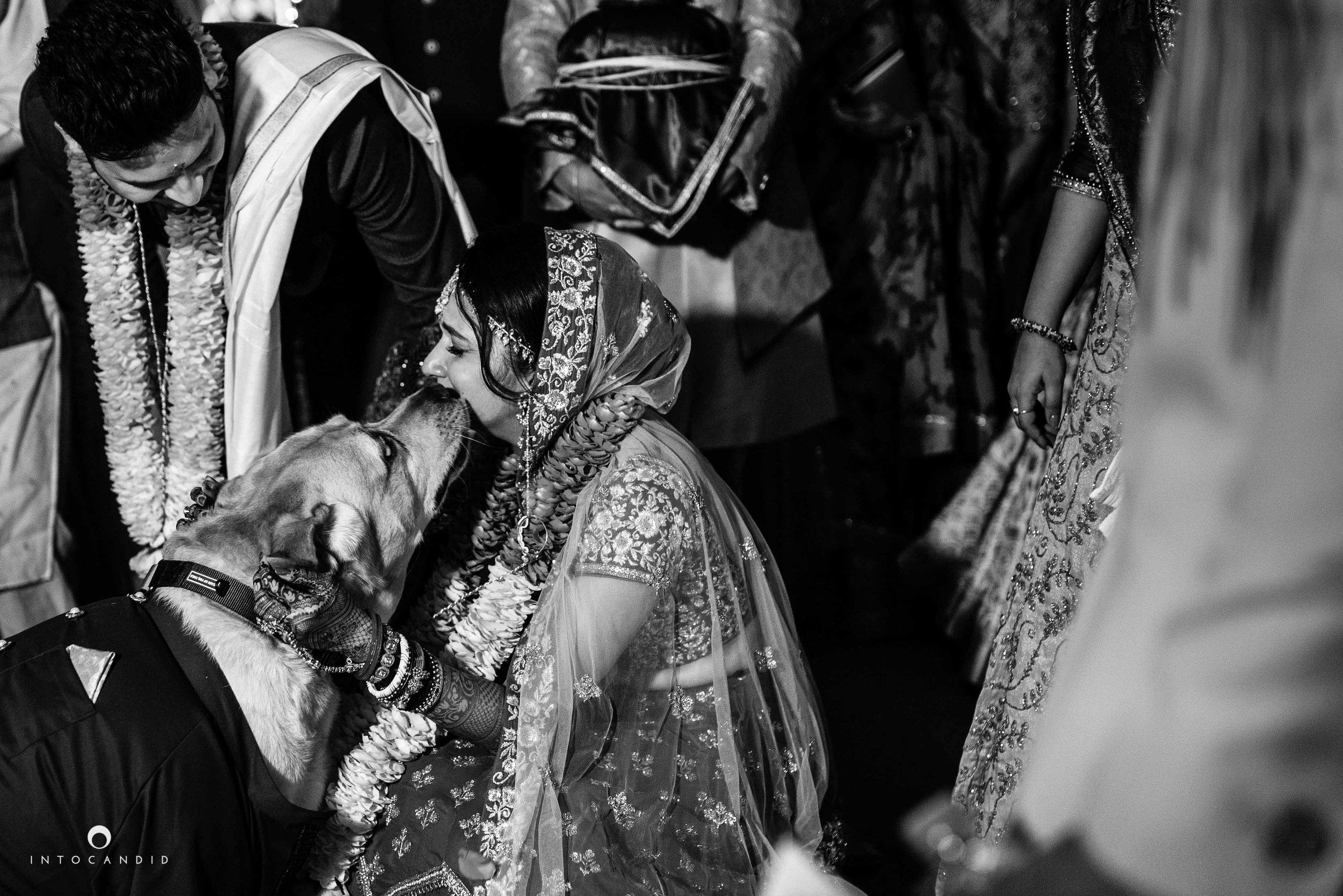 Goa_Wedding_Photographer_Zuri_whitesands_104.jpg