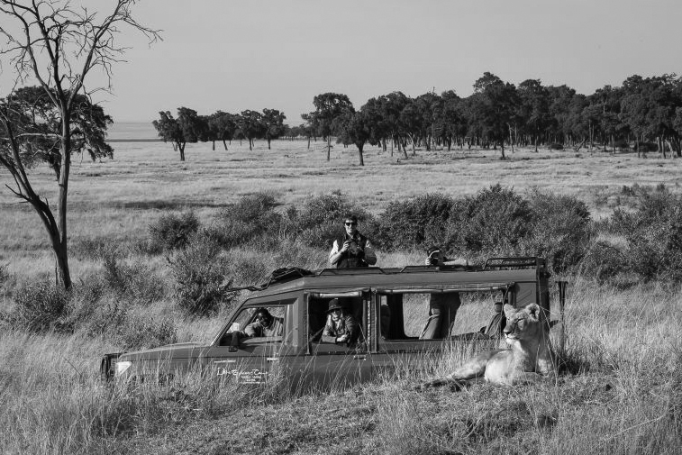 A typical East Africa Safari Vehicle | Image © Governors Camp, Masai Mara, Kenya
