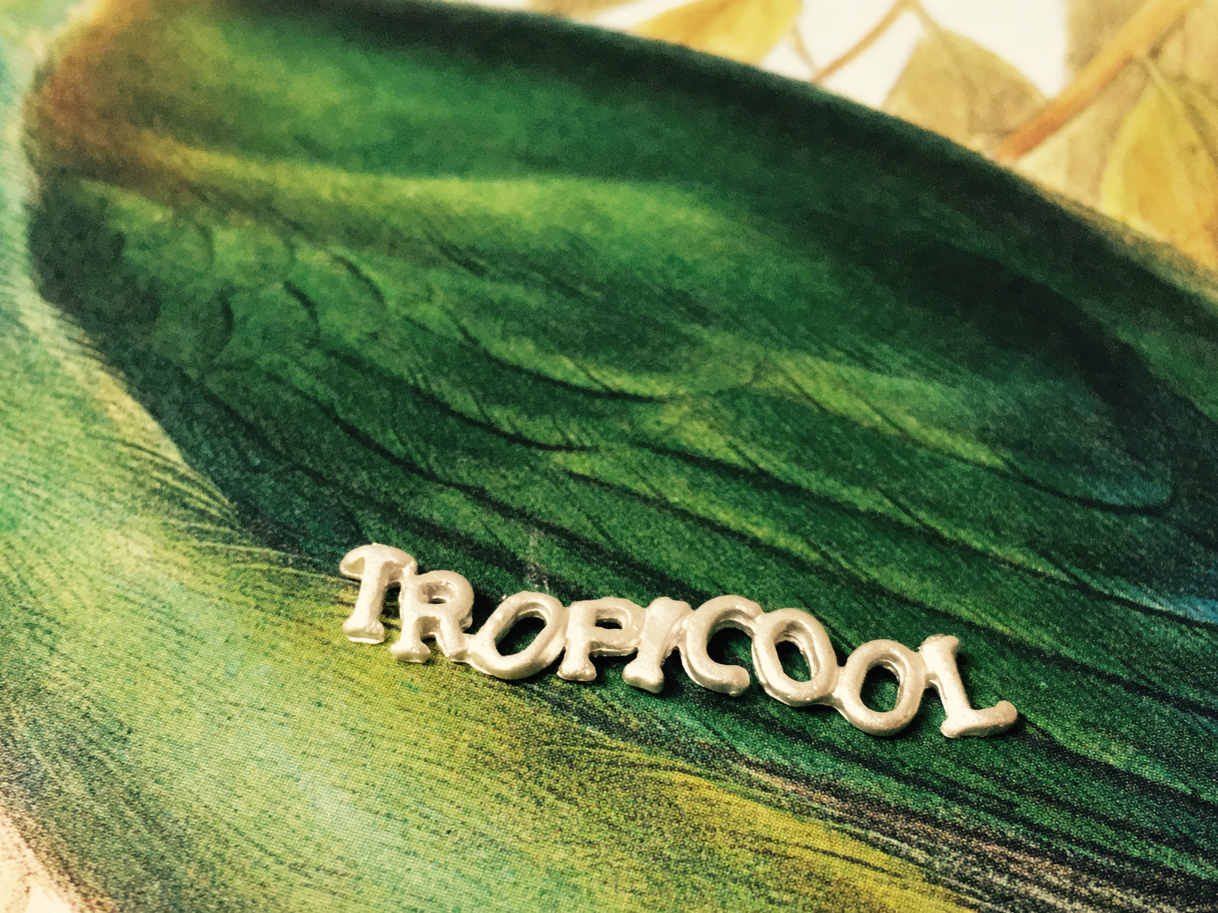 Tropicoolbroche.jpg