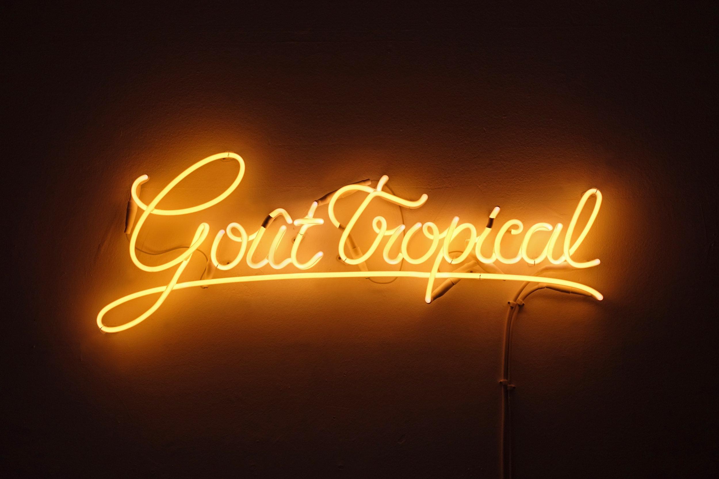 FlorianViel-GoutTropical.jpg