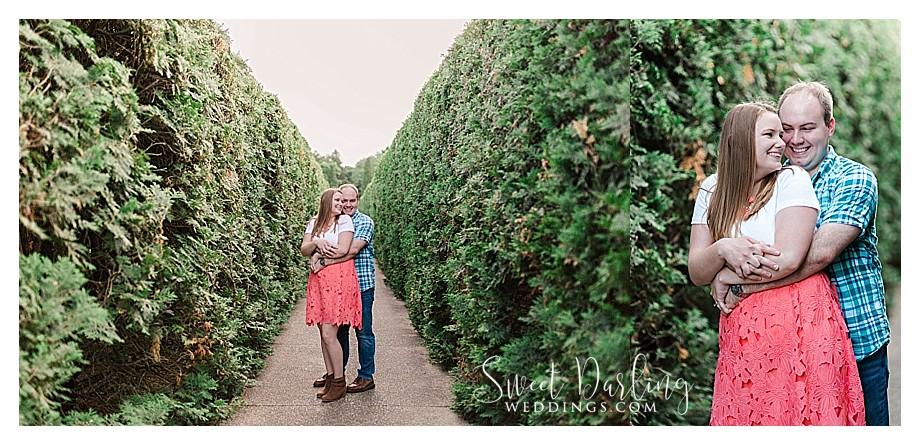 Evergreens tall shrubs at Allerton Park
