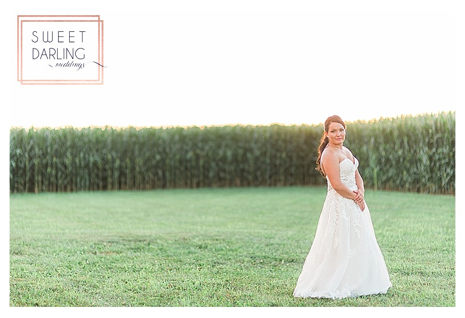 wedding-barn-farm-horses-sparkler-exit-Engelbrecht-Farm-Paxton-Illinois-Sweet-Darling-Weddings-Photographer_0502