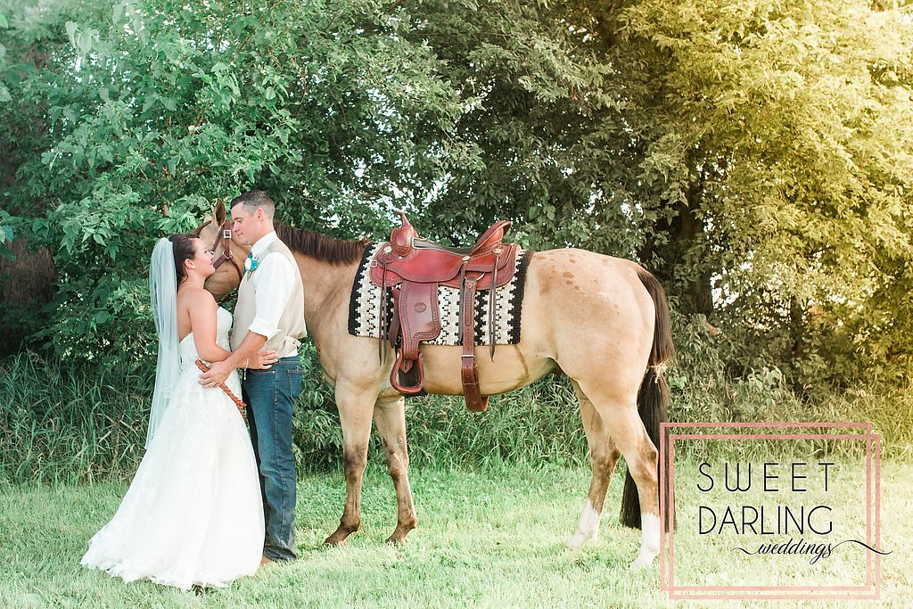 wedding-barn-farm-horses-sparkler-exit-paxton-il-champaign-wedding-photographer-darling-sweet_0269