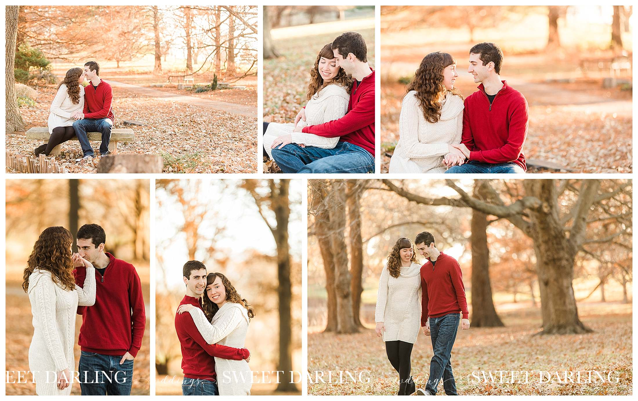 Fall engagement session during golden hour at University of Illinois Arboritum