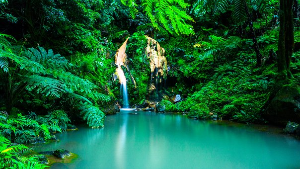 Landscape Azores Oasis Forest Portugal Waterfall