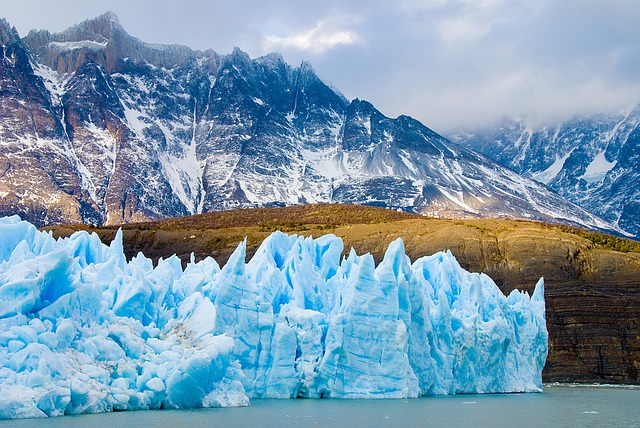 Travel Chile Nature Glacier Flock Patagonia