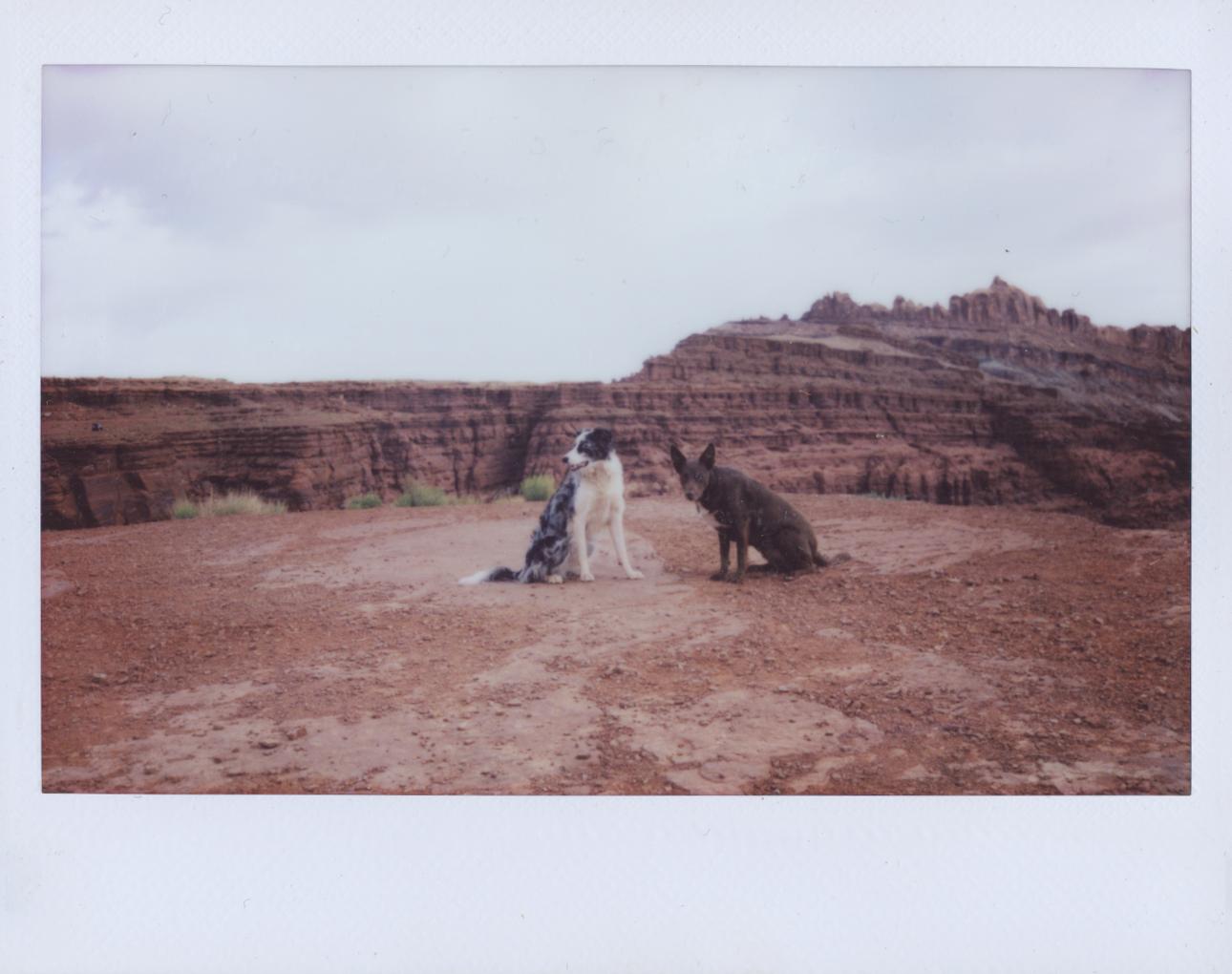 Polaroid Scans30.jpg