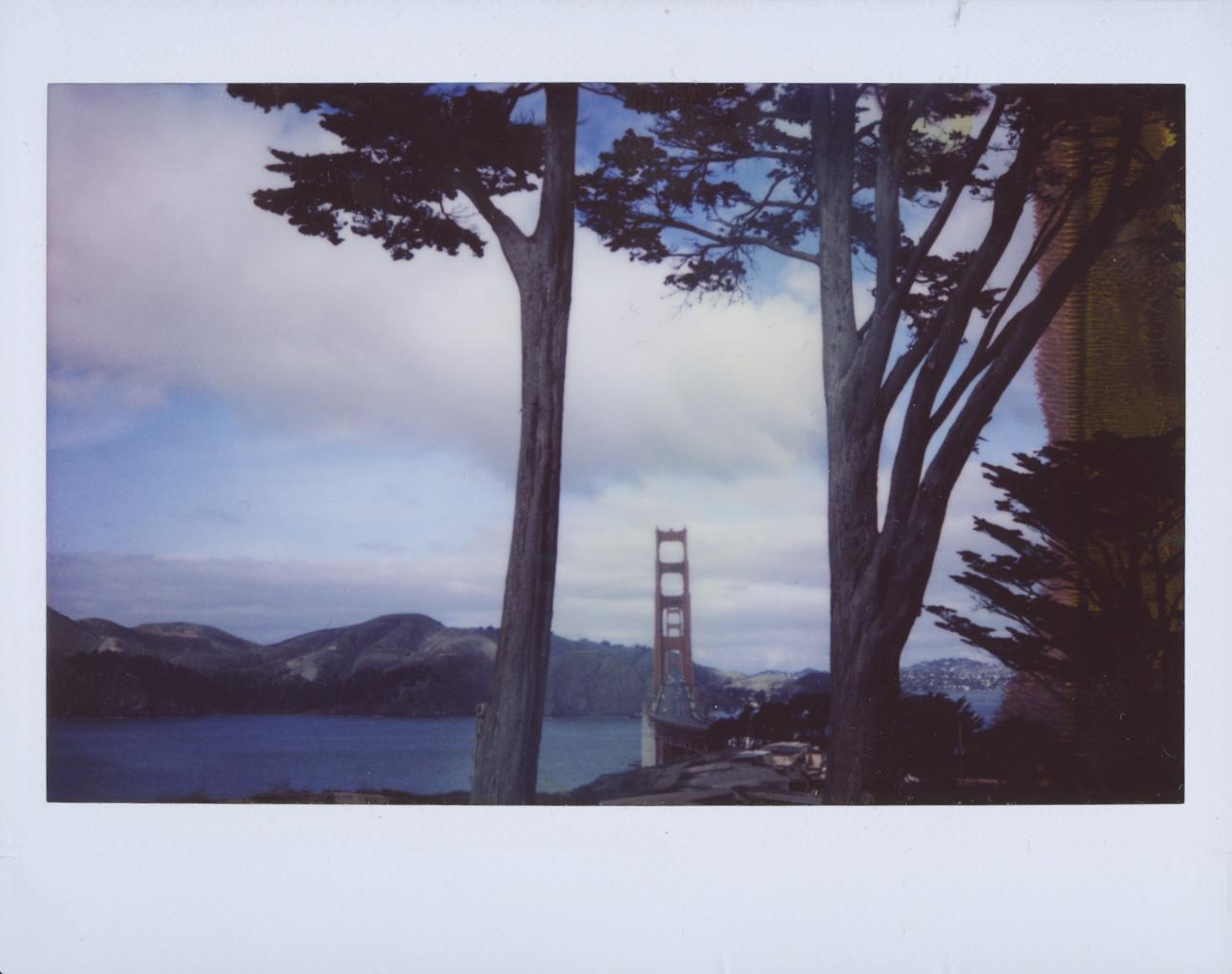 Polaroid Scans47.jpg