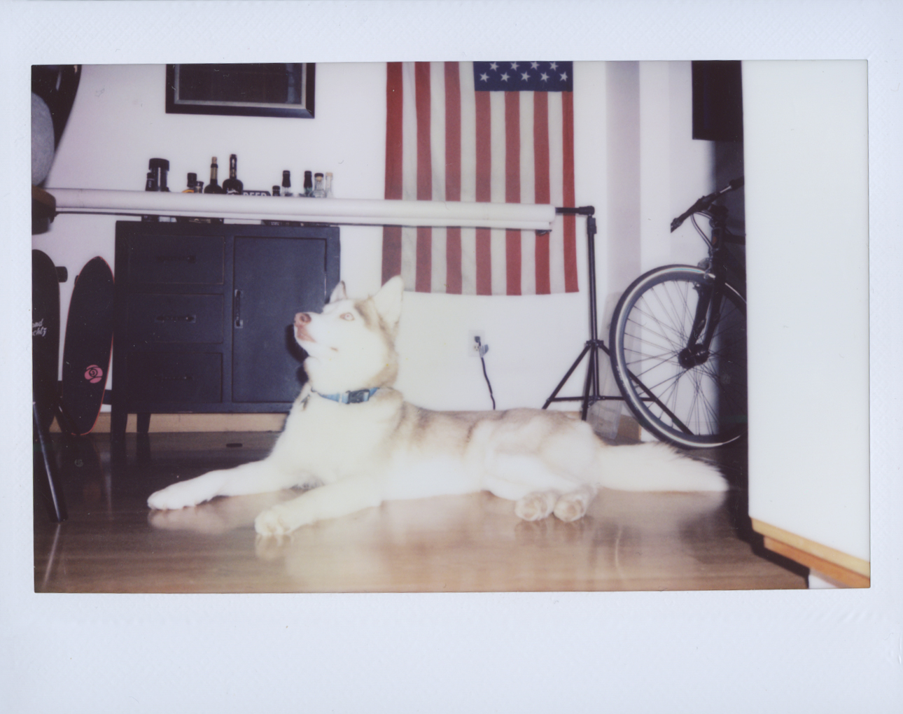 Polaroid Scans50.jpg