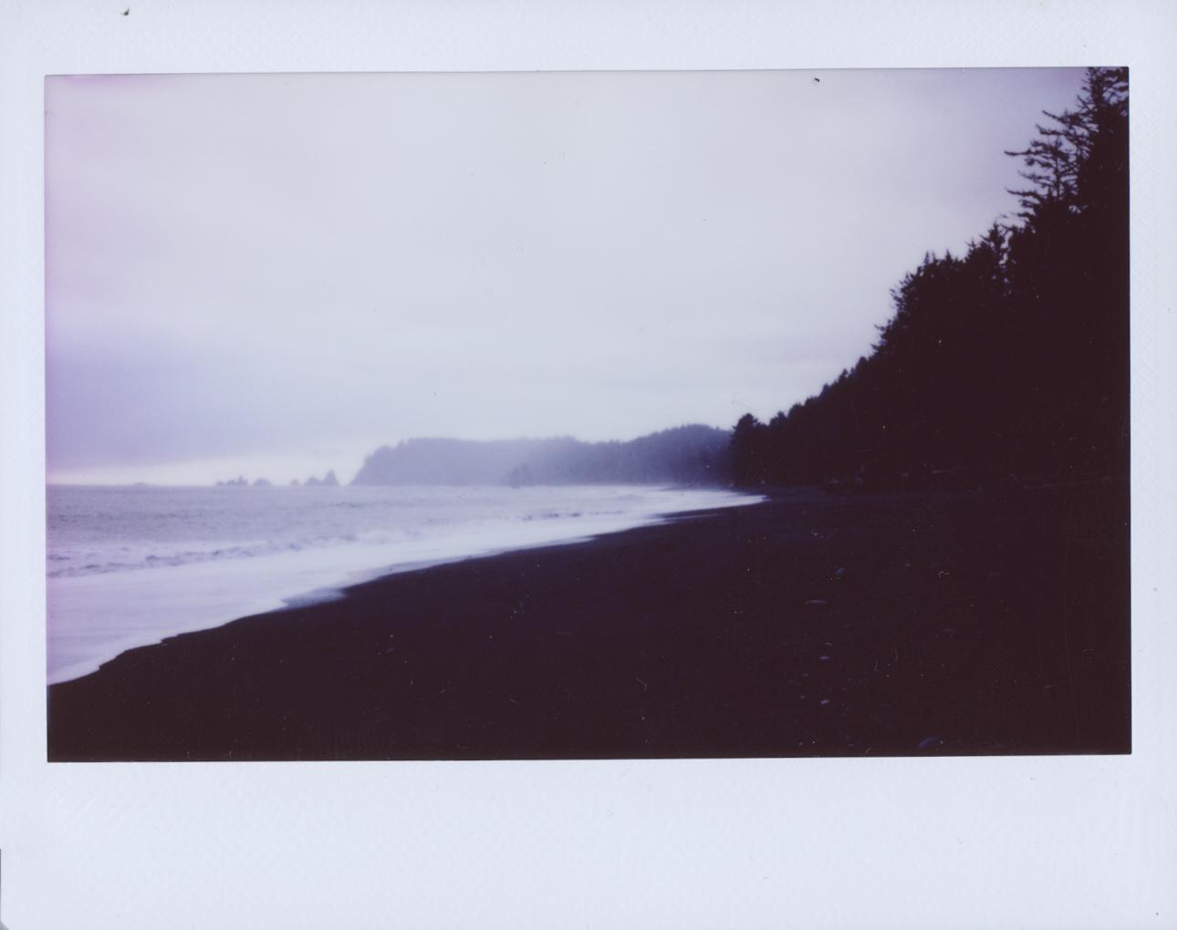 Polaroid Scans101.jpg