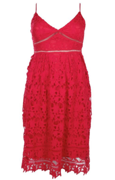 Boohoo Plus Leila Applique V Neck Lace Dress