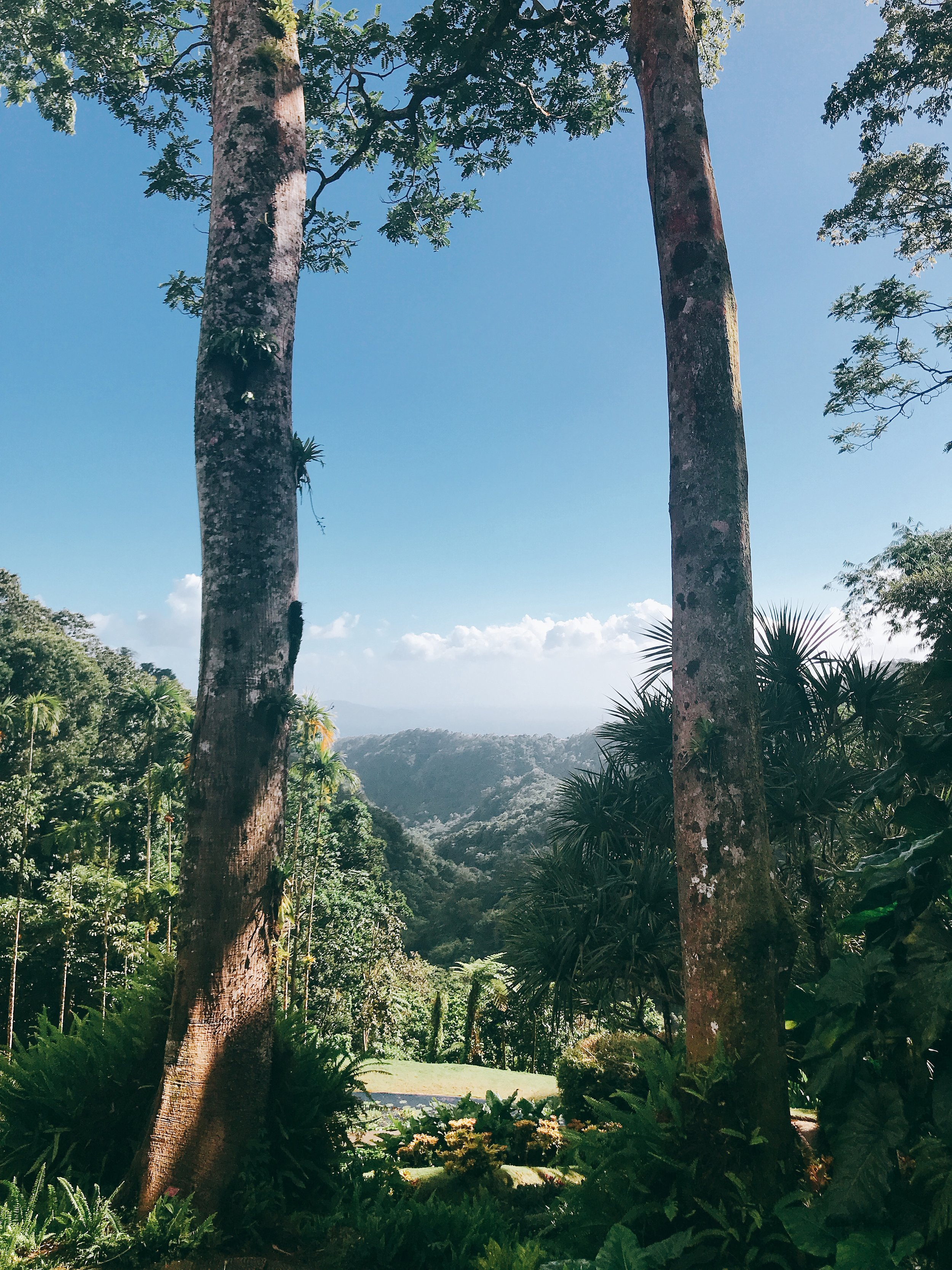Martinique France