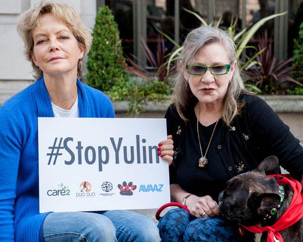 Carrie Fisher Stop Yulin